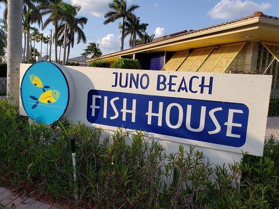 Juno beach fish house ristorante recensioni numero di for Juno beach fish house