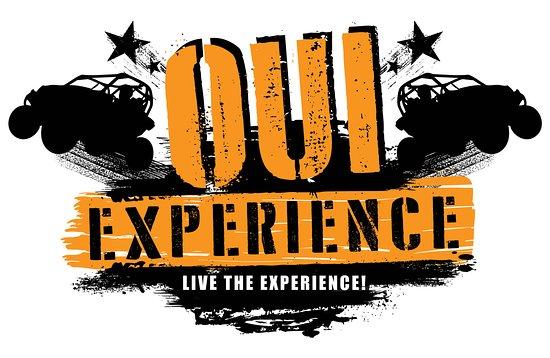 Dolan Springs, AZ: Our logo!