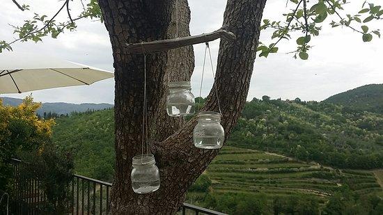 Montefioralle, อิตาลี: Alberto's Home Restaurant