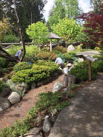 Nikkei Internment Memorial Centre:  Hei-wa Tei- en Garden Spring Clean-Up Event 2017