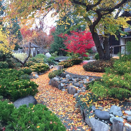 Nikkei Internment Memorial Centre: Lovely fall colour at the NIMC in October