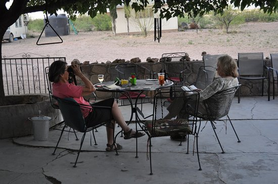 Portal, AZ: patio facing the east, perfect for birding, rabbit watching and more