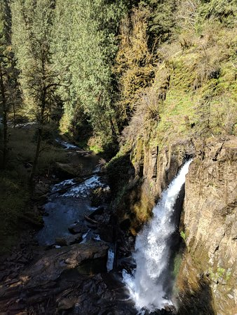 Oregon Coast, Oregón: View of falls from the bridge