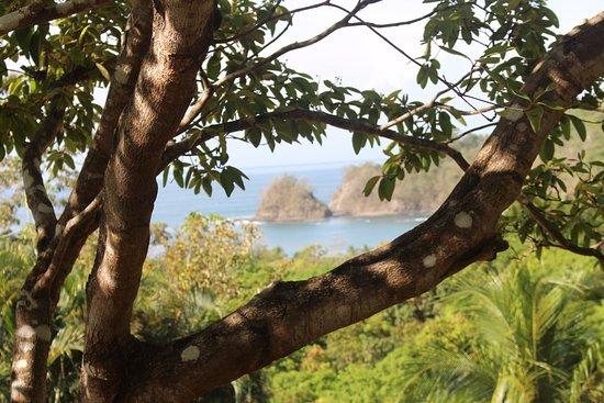 Foto de Punta Islita