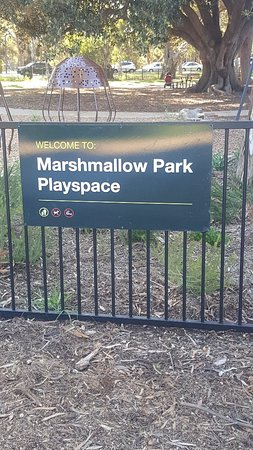 Marshmallow Playground