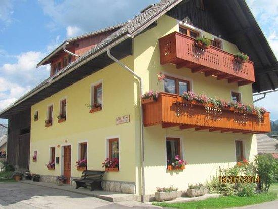 Apartments and Rooms Hodnik Slavko is located in Srednja Vas v Bohinju.