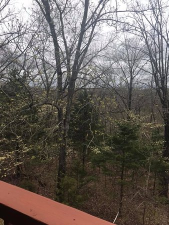 Branson West, MO: View from the Patio.