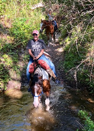 Parrish, Floride : A trot through the creek!