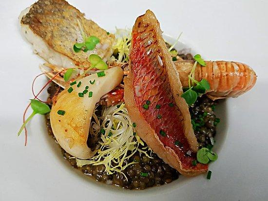 Le Comptoir de l'Océan : Risotto de lentilles du Puy AOP terre et mer Langoustine, rougets, merlu et seiche sauvages