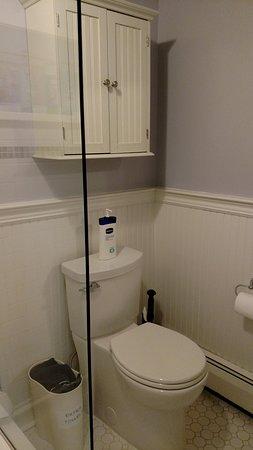 Kingston, NY: Toilet