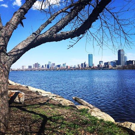 Hyatt Regency Cambridge, Overlooking Boston: photo0.jpg