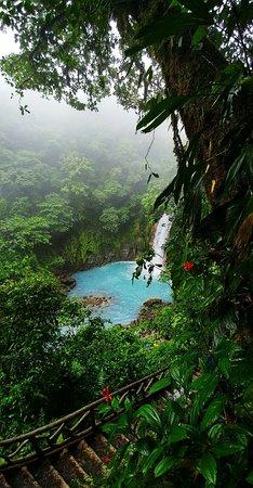 Tenorio Volcano National Park, Costa Rica: Fotor_15248853376864_large.jpg