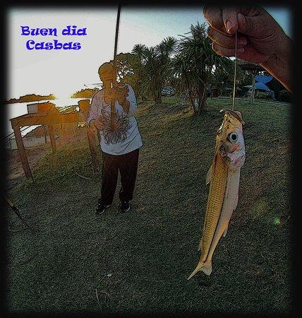 Partido de Guamini - Laguna Cochicó - Torneos de Pesca de Pejerrey