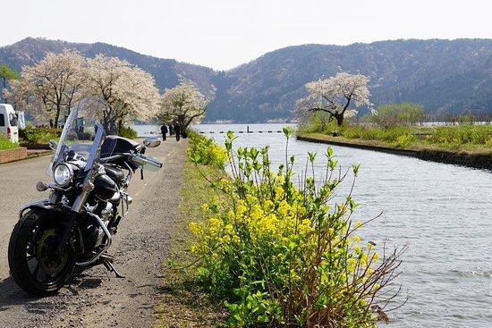Lake Yogo Picture