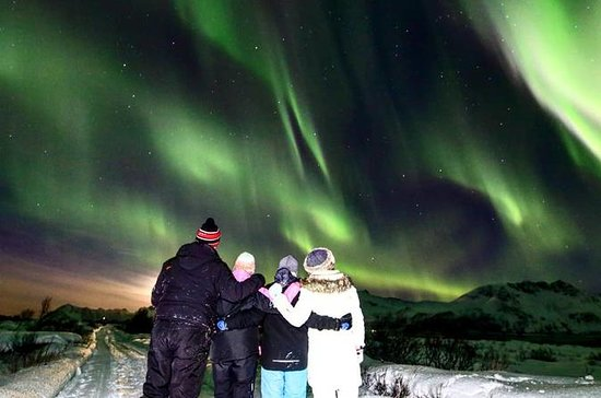 Northern Lights Observation from...