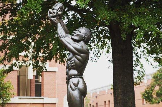 Atlanta Private History Tour: Civil...