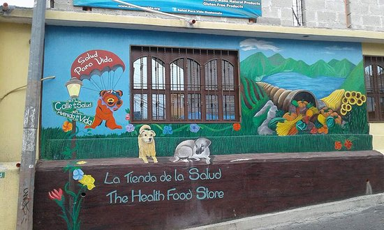 San Pedro La Laguna, Guatemala: Just look for the bear & the dogs.