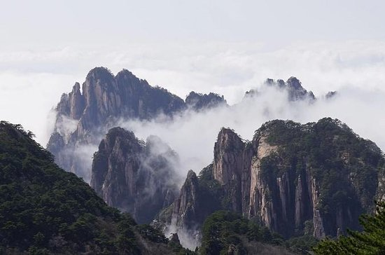 Private tour:1 Day Huangshan Tour