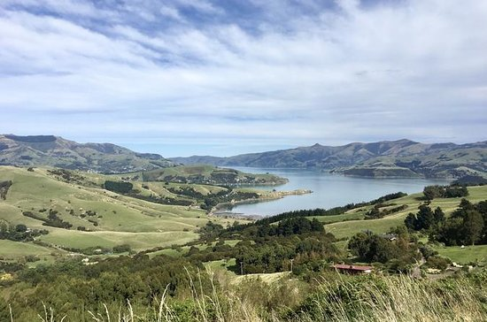 Akaroa and Banks Peninsula Private...