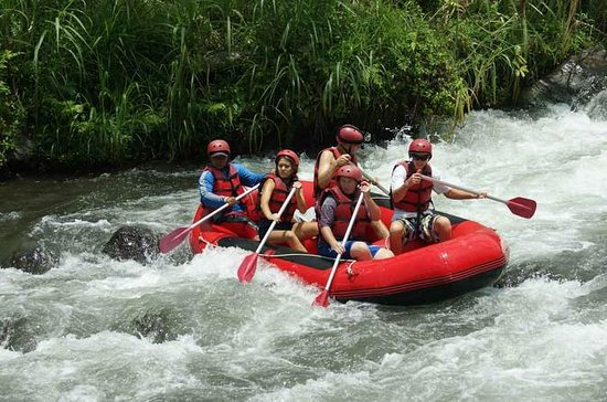 Bali Rafting, Rice terrace, Tanah Lot...