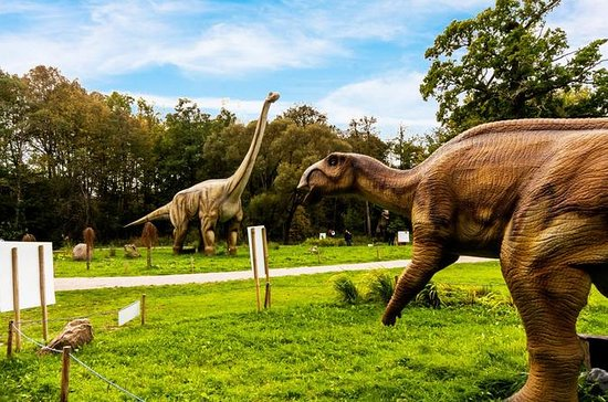 Dino Park Radailiai Admission Ticket
