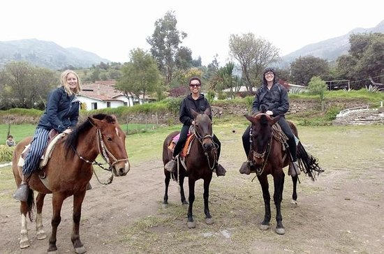HORSE RIDING - Panoramic Mountain...