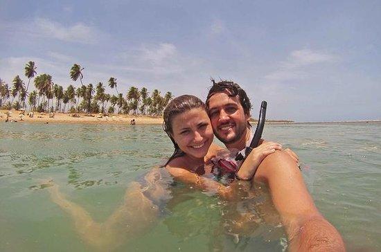 Salvador de Bahia : Praia do Forte...