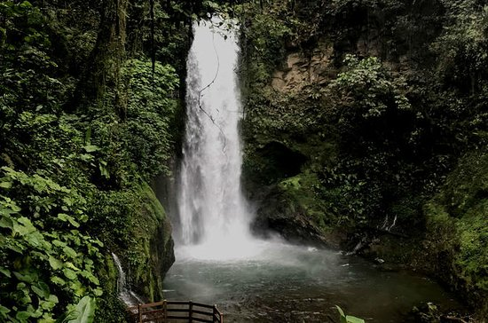 La Paz Waterfall Garden Tour from ...