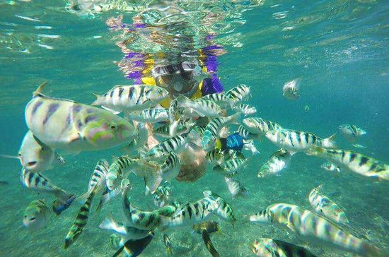 Snorkling at Amuk Bay Combination...