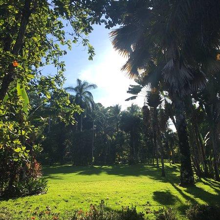 Cabo Matapalo, Costa Rica: photo6.jpg