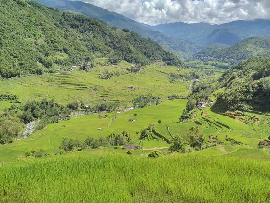 Hapao Rice Terraces: IMG_20180502_095314_large.jpg