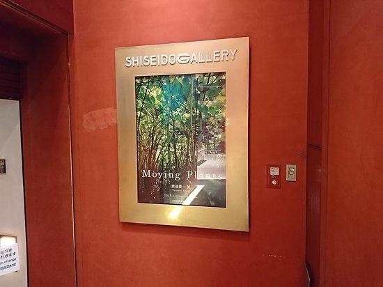 Shiseido Gallery