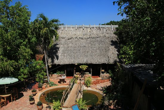 Santa Elena, Mexico: The thatched roof open structure out back - great for dining on hot days