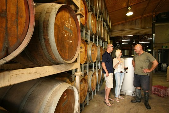 Mount View, Australia: Wine Tasting