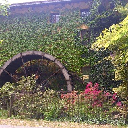 Molino del Torchio: photo1.jpg