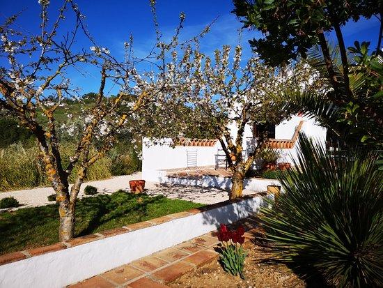 Вильянуэва-дель-Росарио, Испания: IMG_20180417_101301_large.jpg
