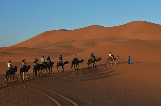 Tours in Marrakech