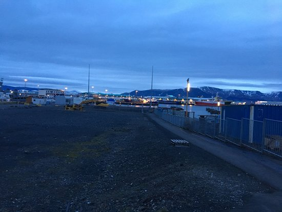 Icelandair Hotel Reykjavik Marina: Parking area next to hotel