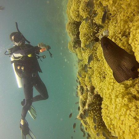 Aqua Vision Scuba Diving: photo8.jpg