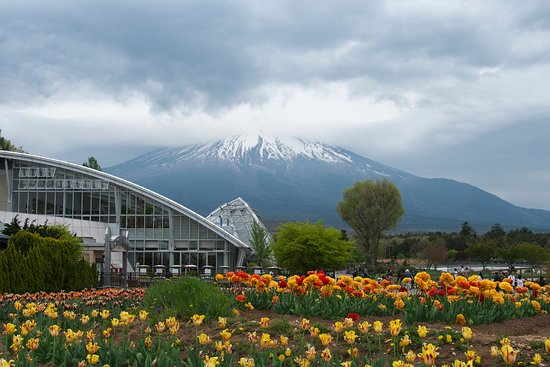 Yamanakako-mura, Giappone: 奥に入るとバックには富士山。天気が悪かったが、眺められました。