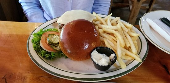 Bonnie Springs Ranch Restaurant: Bison Burger