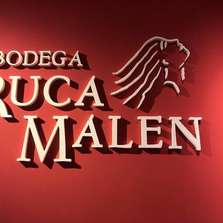 Bodega Ruca Malen: photo6.jpg