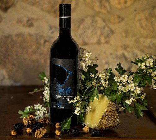 Montalcino, Italy: Gatto nero is a IGT Indicazione Geografica Tipica biodynamic