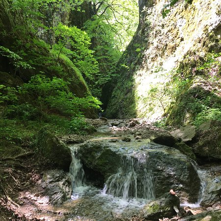 Rustavi, Georgia: photo3.jpg