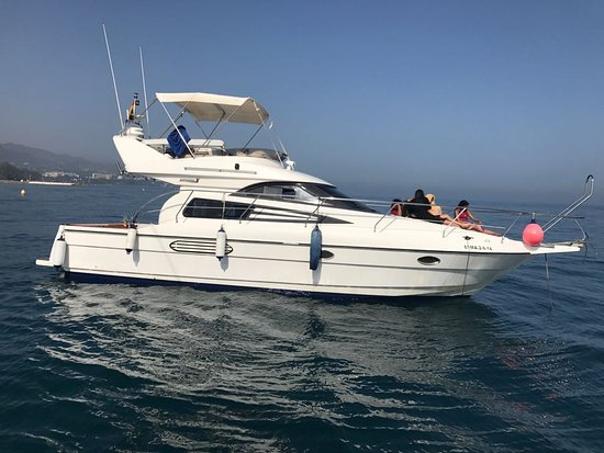 Relax boat trip. Sightings of dolphins in Lovit Charter Puerto Banus