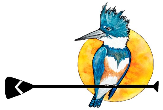 St Simons Island, Georgien: Kingfisher Paddleventures logo - you know it's us when you see this