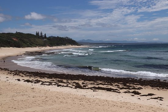 Nambucca Heads, Australia: A tropical beach