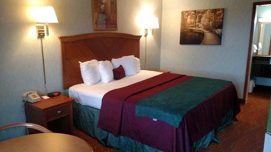 Downtown Inn & Suites: King room