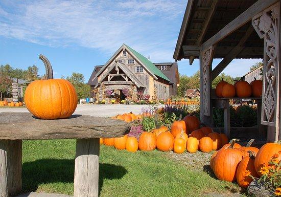 Swanton, VT: Fall at Hudak Farm