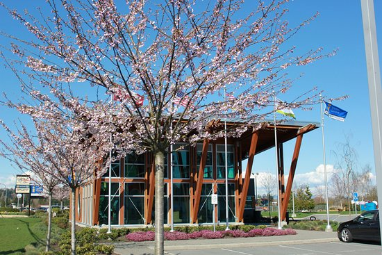 Springtime blossoms at the Surrey Visitor Centre